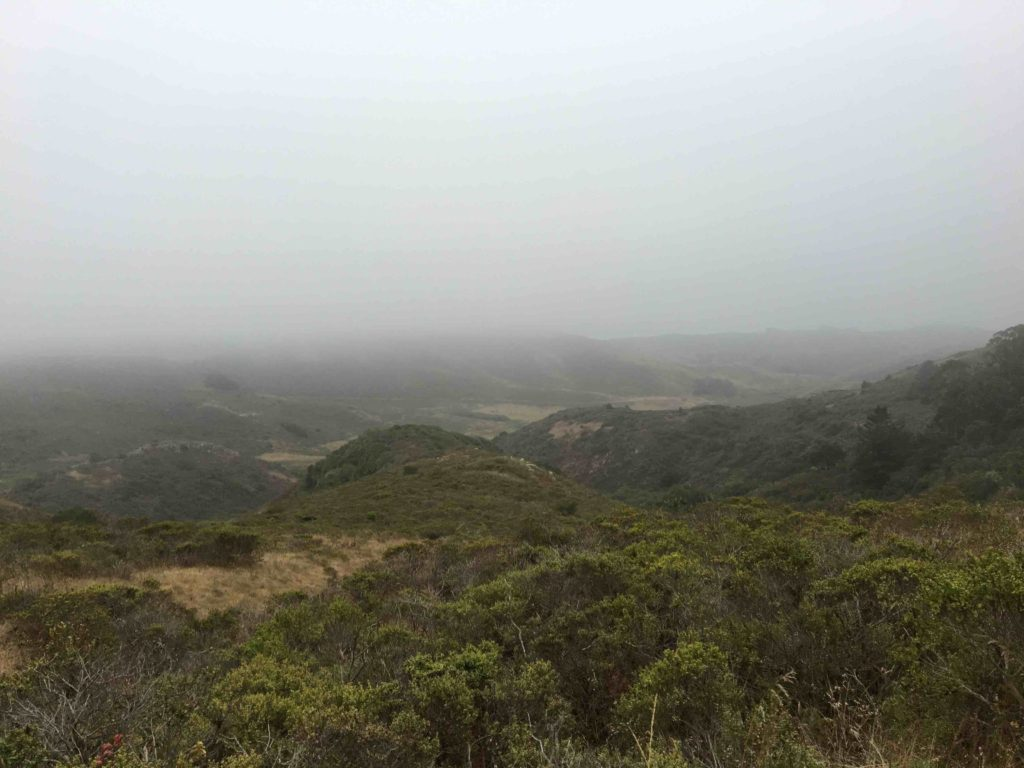 The fog continues to hang around as we hike out the next morning.